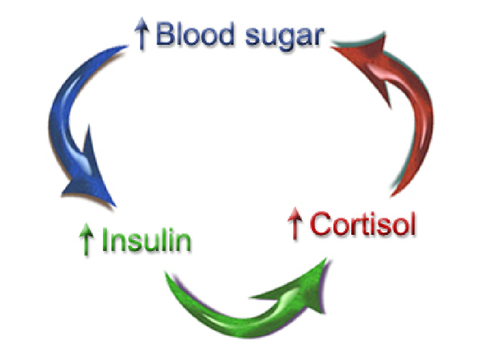 Insulan and it's Relationship to Blood Sugar
