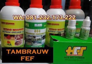 Jual SOC HCS, KINGMASTER, BIOPOWER Siap Kirim Tambrauw Fef