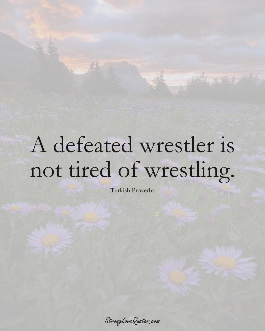 A defeated wrestler is not tired of wrestling. (Turkish Sayings);  #MiddleEasternSayings