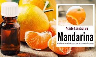 El aceite esencial de mandarina uno de los más populares por sus propiedades digestivas