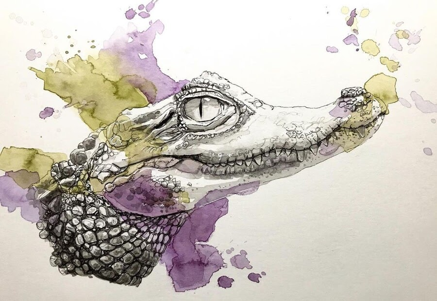 08-Crocodile-Valerie-de-Rozarieux-www-designstack-co
