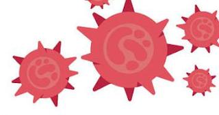 Mengenal Layanan Rapid Test untuk Virus Corona