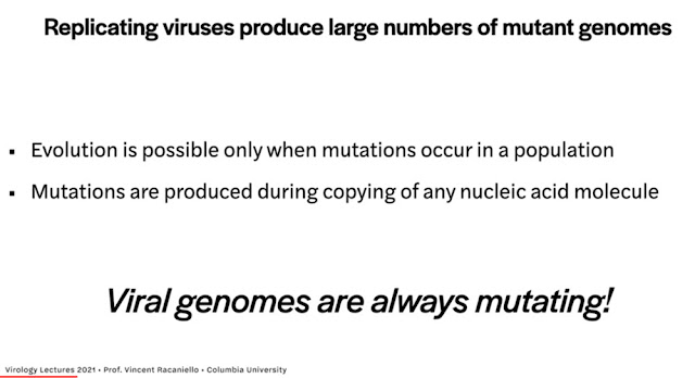 "Viral genomes are always mutating (Source: Vincent Racaniello, ""Virology Lectures 2021)"