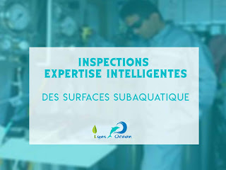Inspections - expertise Intelligentes des surfaces subaquatique