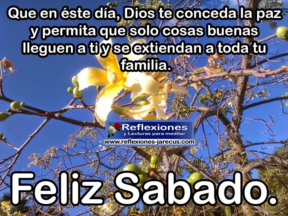 Que en este día, Dios te conceda la paz y permita que solo cosas buenas lleguen a ti y se extiendan a toda tu familia Feliz sábado
