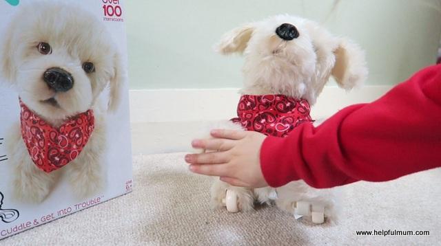 interactive dog hi five