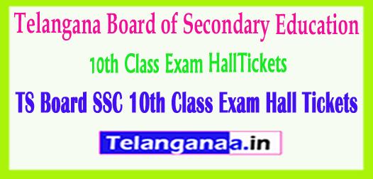 Telangana TS Board SSC 10th Class Exam HallTickets 2018 Download