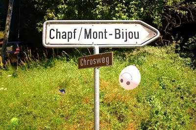 Le Chameau Bleu - Pancarte de Bienne - Suisse