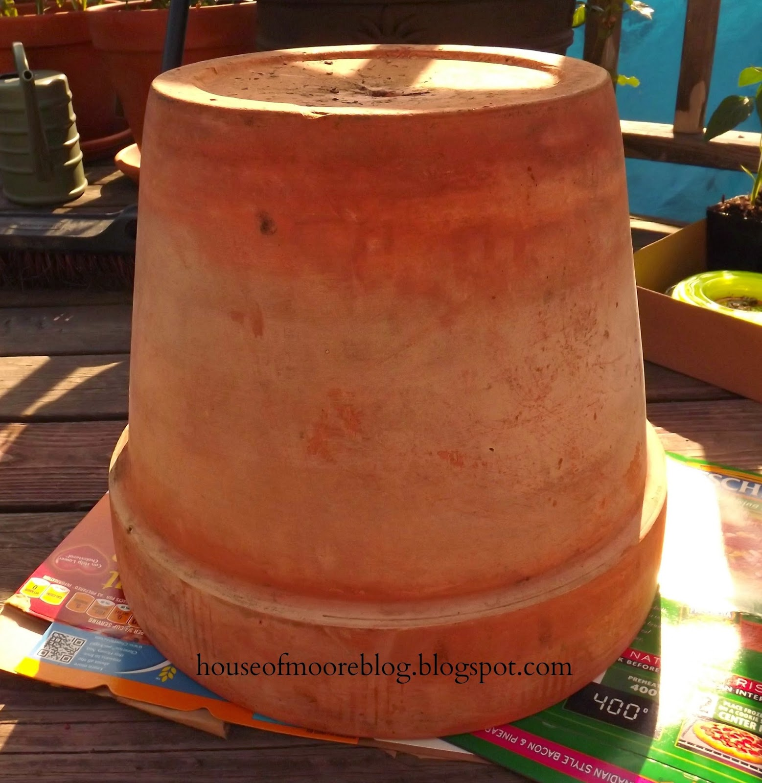 Updated DIY Painted Clay Pot