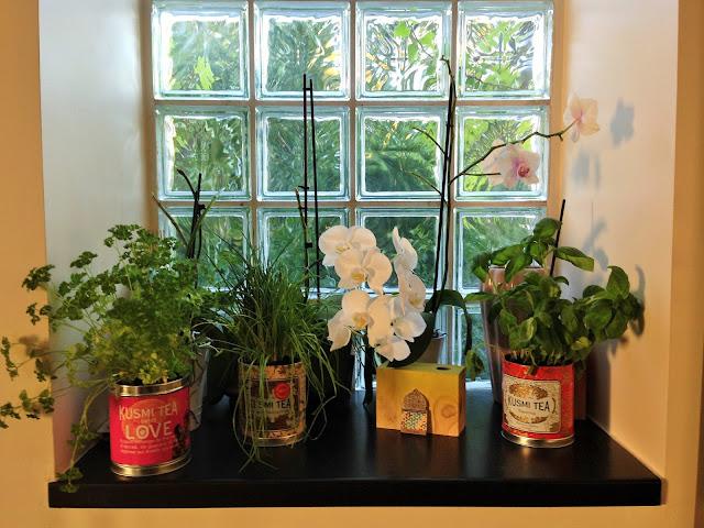 Do it yourself recycler ses boites de thé kusmi tea en pot de fleur