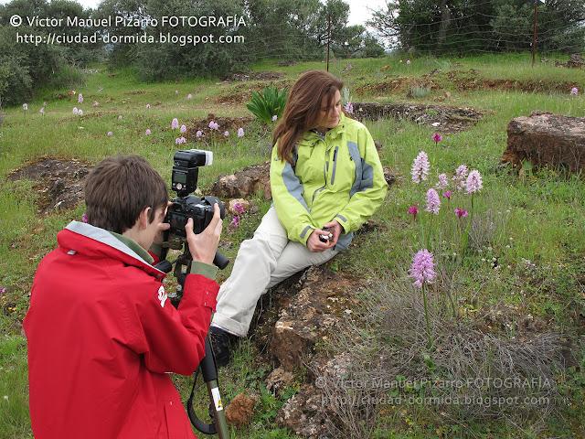 ded52b0b45b2 Orquídeas de pastizales y matorrales mediterráneos