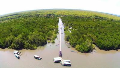 wisata alam mangrove bedul