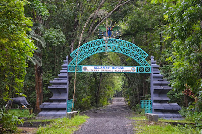 Menguak Misteri Taman Nasional Alas Purwo yang Terkenal Angker Se-Pulau Jawa 18
