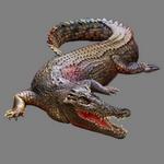 alligator in spanish