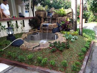 contoh taman basah