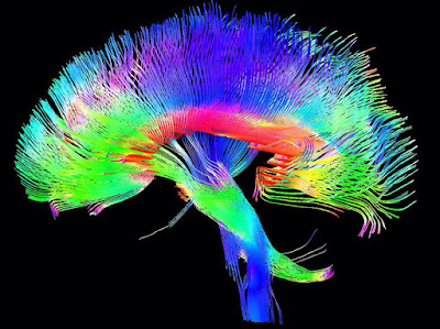 South Korea Announces Huge Neuroscience Investment