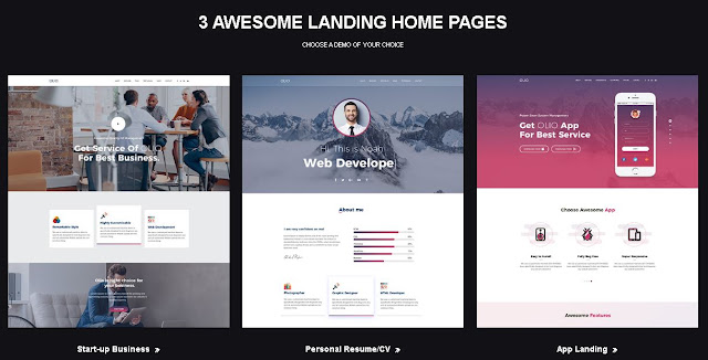 Olio-One-Page-WordPress-Theme 2021