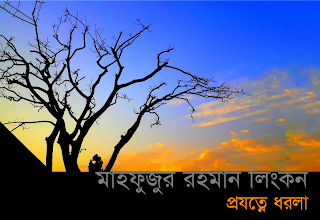 মাহফুজুর রহমান লিংকনের মুক্তগদ্য 'প্রযত্নে ধরলা'