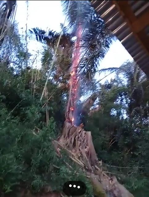 Warga Lalikan Rindingallo Panik, Muncul Semburan Api dari Tanah hingga Bakar Pohon