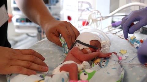 Az anyatej élethosszig tartó védelmet biztosíthat