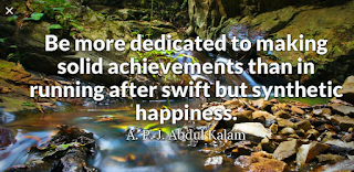 """Be more dedicated to making solid achievements than in running after swift but synthetic happiness."""