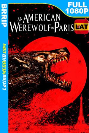 Un hombre lobo americano en París (1997) Latino HD 1080P ()