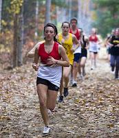 Ormanlık bir arazide kros koşusu yapan atletler