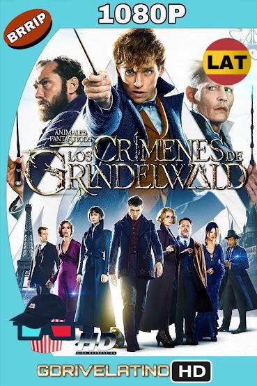 Animales Fantásticos: Los Crímenes de Grindelwald (2018) BRRip 1080p Latino-Ingles MKV