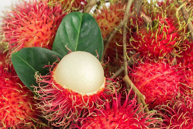 rambutan - list of indonesian fruits