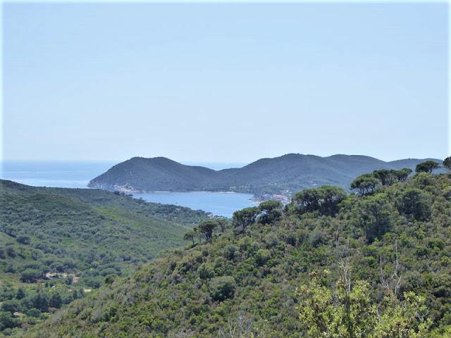 panorama di Marina di Campo
