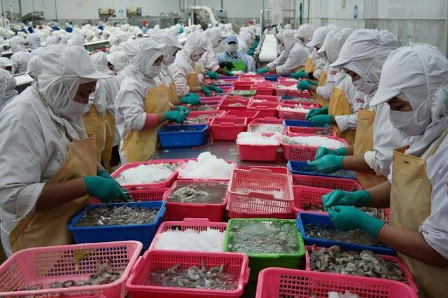 Indonesia Kuasai 6,8% Impor Produk Kelautan dan Perikanan Tiongkok