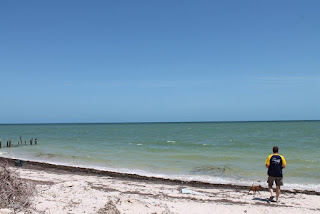 Man on the beach.