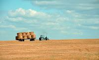 Harvesting by Gozha Net on Unsplash