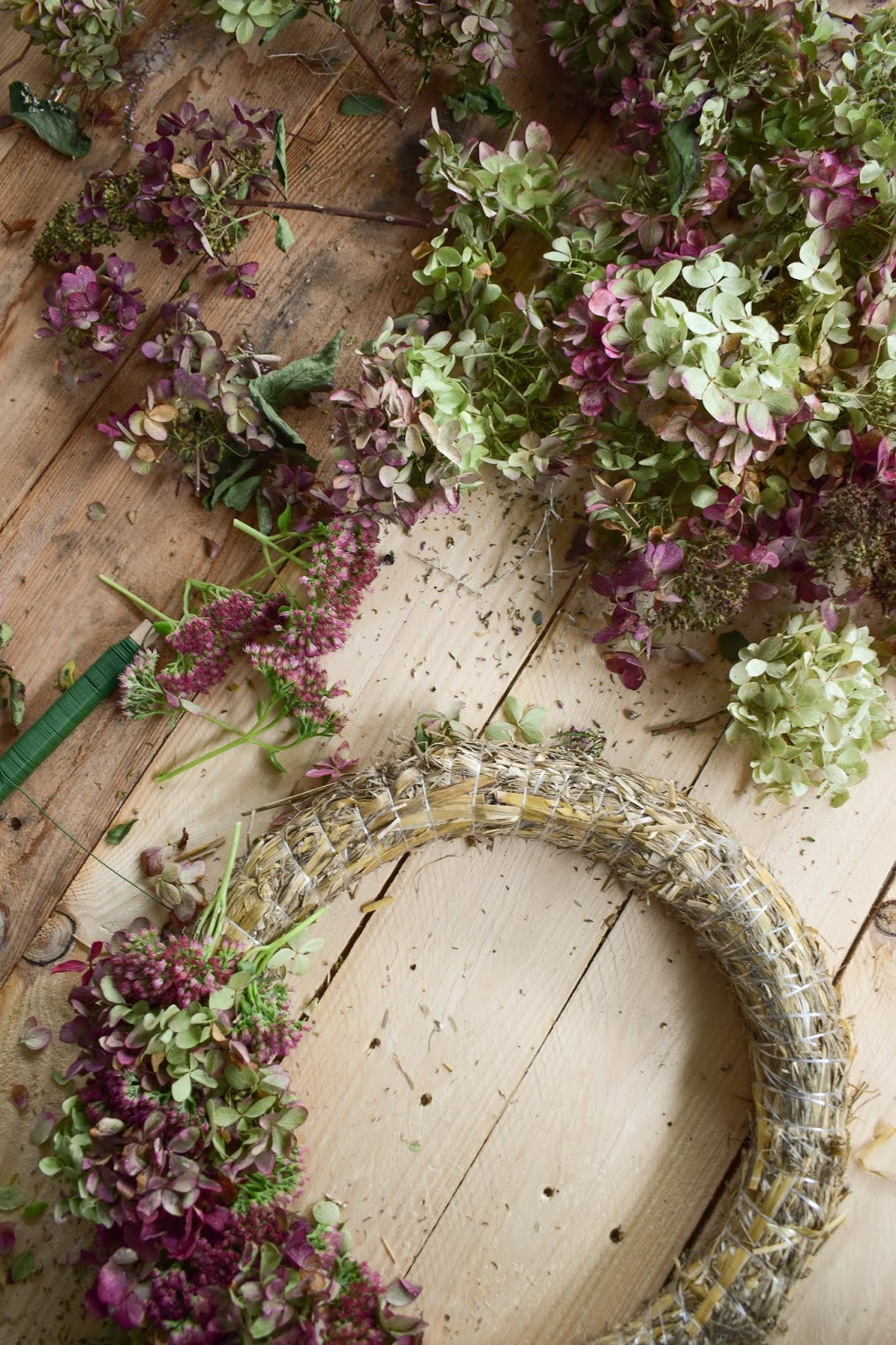 Hortensienkranz Anleitung zum selber binden mit Fetter Henne Kränze Dekoidee Herbst Kranz binden für Anfaenger  herbstlich dekorieren kränze DIY
