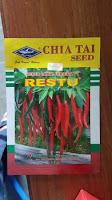 umur tanaman cabe berbuah, cabe merah restu, cabe besar, cara menanam cabe, jual benih cabe, toko pertanian, toko online, lmga agro