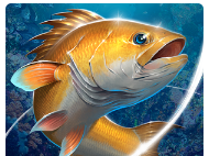 Fishing Hook MOD APK Cheats for Android v1.5.1 New Update
