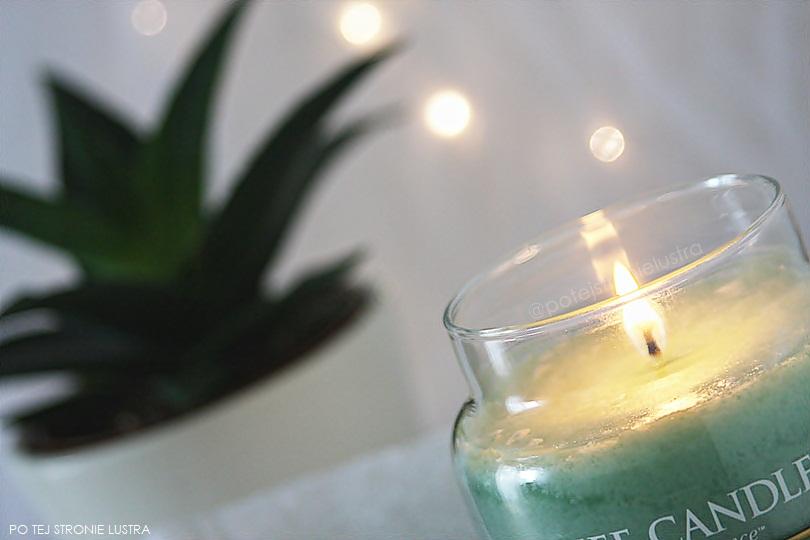 płomień świecy, światełka i aloes