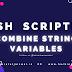 Bash Scripting Combine String Variables