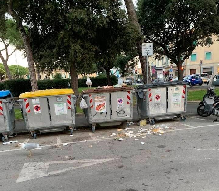 Livorno : continuano le politiche a favore di volatili e piccoli mammiferi da parte dell' amministrazione comunale