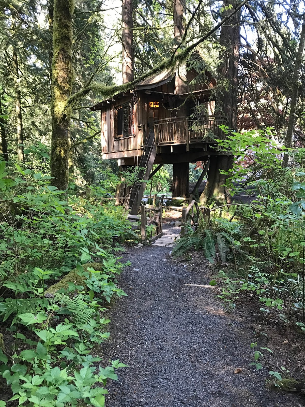 Treehouse masters treehouse point Issaquah Treehouse Point Was Created By Pete Nelson You Mightve Seen Him On Treehouse Masters Show Dedicated To People And The Process Of Building One Of These Green Wedding Shoes Treehouse Point Katie Scarlett Chronicles