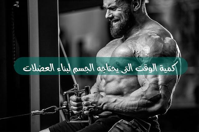 كمية الوقت التى يحتاجه الجسم لبناء العضلات