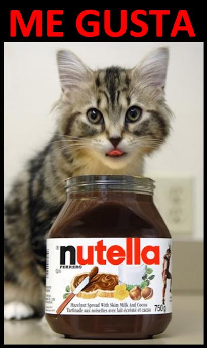 ME GUSTA • Kitty likes Nutella