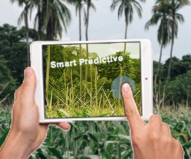 Augmented Reality in Agriculture