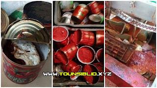 مجاز الباب : حجز 211 آلف علبة طماطم غير صالحة للاستهلاك تباع للمواطنين