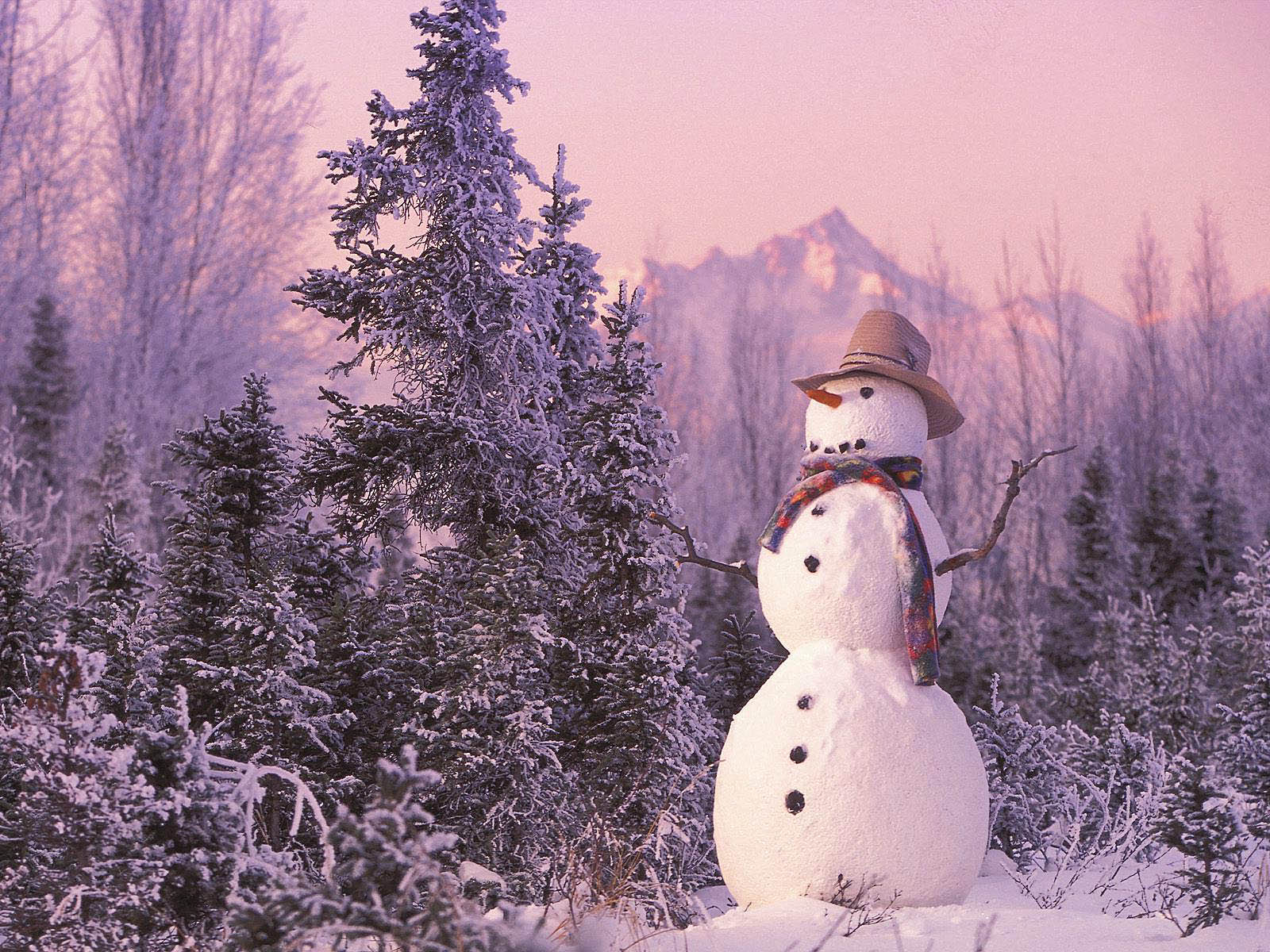 cute country snowman wallpaper - photo #6