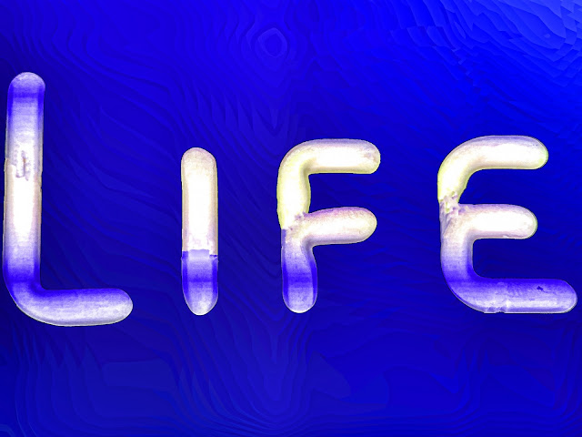 what is life  Life is blessing of God Life is like a water