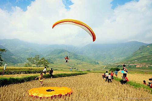 Paragliding festival to watch the Mu Cang Chai golden season
