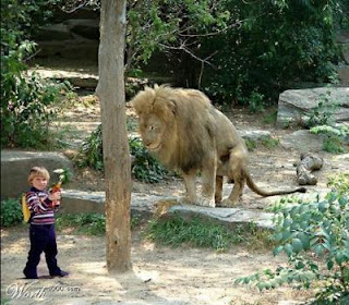 childs with lion