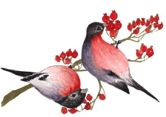Konsep Menggambar Flora, Fauna, dan Alam Benda dalam Seni Budaya
