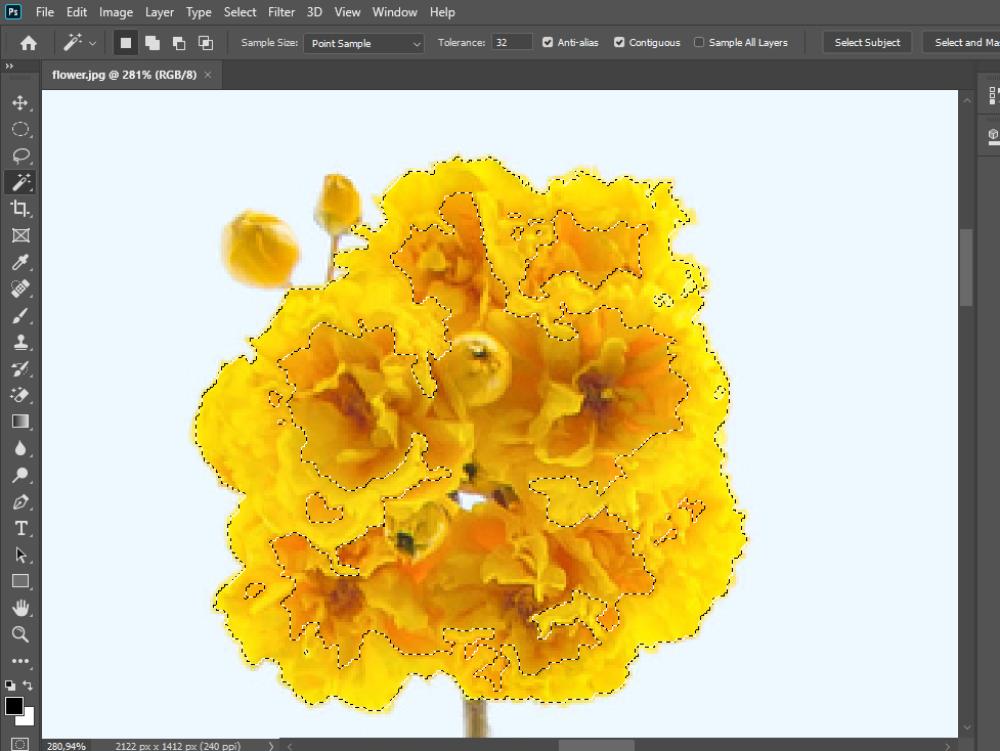 Macam Macam Tools Di Adobe Photoshop Cc 2020 Beserta Fungsinya Blog Perpustakaan